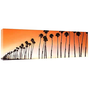 Colossal Images Santa Brabara Palms Photographic Print on Canvas