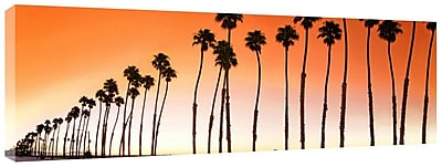 Colossal Images Santa Brabara Palms Photographic Print on Canvas