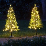 Kringle Traditions LED Wincester Prelit 2' Walkway Tree; Clear