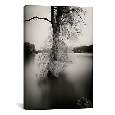 iCanvas 'Puerta' by Geoffrey Ansel Agrons Photographic Print on Canvas; 40'' H x 26'' W x 0.75'' D