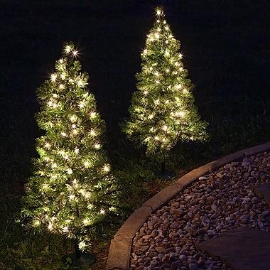 Kringle Traditions Winchester Fir 2' Dark Green Fir Trees Artificial Christmas Tree w/ 50 lights