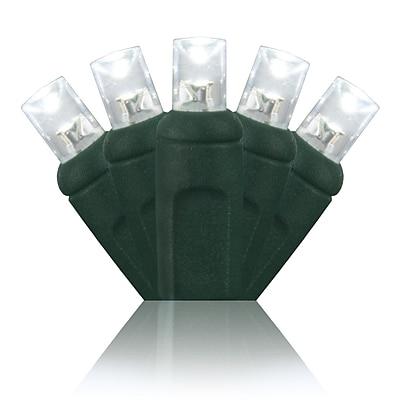 Wintergreen Lighting 50 Light String Lights; Cool White WYF078277411175