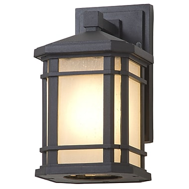 DVI Cardiff 1-Light Outdoor Wall Sconce; 9.75'' H x 6.75'' W x 5.5'' D