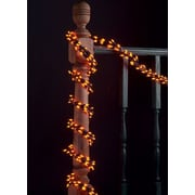 Wintergreen Lighting 9' Garland Lights