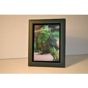 Budd Leather Leather Picture Frame; Green