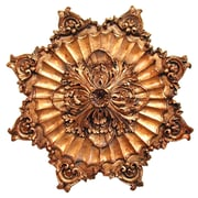 Hickory Manor House Acanthus Rope Ceiling Medallion; Baroque