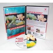 Weber Art Mary Henderson Watercolor Lotus Blooms 1 Hour DVD