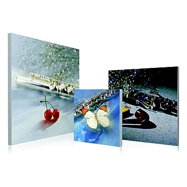 Artistic Bliss Clarinet 3 Piece Framed Photographic Print Set