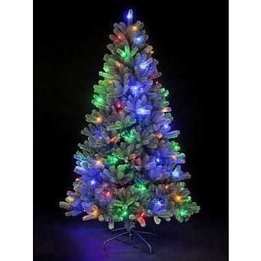 Hometime Snowtime 6.6' Green Pre-Lit Rocky Mountain Artificial Christmas Tree w/ 350 Color LEDs
