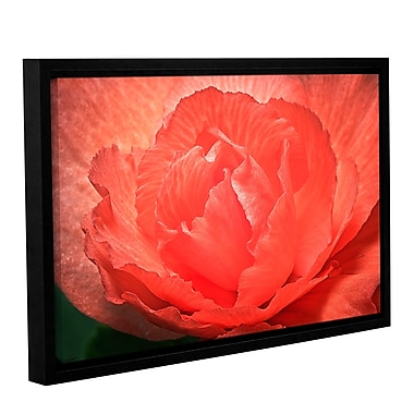 ArtWall Flower Petals by Antonio Raggio Framed Photographic Print on Wrapped Canvas; 32'' H x 48'' W