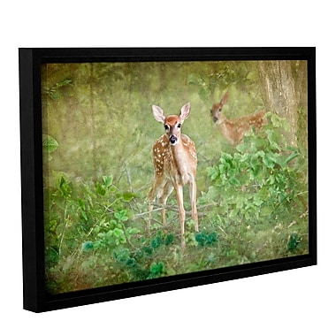 ArtWall Leering Doe by Antonio Raggio Framed Graphic Art on Wrapped Canvas; 16'' H x 24'' W
