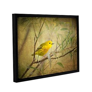 ArtWall Bird On Branch by Antonio Raggio Framed Graphic Art on Wrapped Canvas; 36'' H x 48'' W