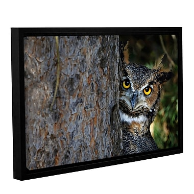 ArtWall Peering by Antonio Raggio Framed Photographic Print on Wrapped Canvas; 32'' H x 48'' W