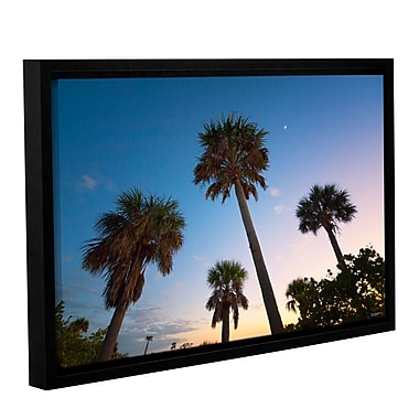ArtWall Trees At Dusk by Antonio Raggio Framed Photographic Print on Wrapped Canvas; 32'' H x 48'' W