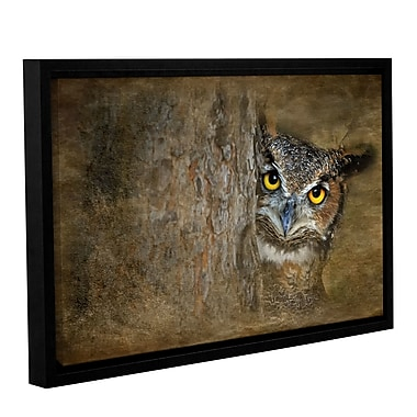 ArtWall Peeping Owl by Antonio Raggio Framed Graphic Art on Wrapped Canvas; 12'' H x 18'' W