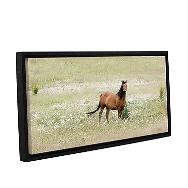 ArtWall Equine Stare by Antonio Raggio Framed Graphic Art on Wrapped Canvas; 18'' H x 36'' W
