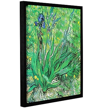 ArtWall The Iris by Vincent Van Gogh Framed Painting Print on Wrapped Canvas; 32'' H x 24'' W