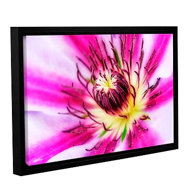 ArtWall Pink Petals by Antonio Raggio Framed Photographic Print on Wrapped Canvas; 32'' H x 48'' W