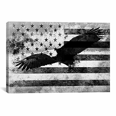 iCanvas Bald American Eagle, U.S. Flag Graphic Art on Wrapped Canvas in Black