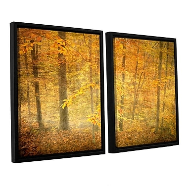 ArtWall Lost In Autumn by Antonio Raggio 2 Piece Framed Photographic Print on Canvas Set