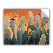 ArtWall Cactus Orange by Rick Kersten Art Appeelz Removable Wall Mural; 24'' H x 32'' W