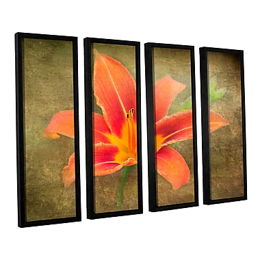 ArtWall Flowers In Focus 4 by Antonio Raggio 4 Piece Framed Graphic Art on Canvas Set
