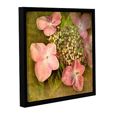 ArtWall Pretty In Pink by Antonio Raggio Framed Graphic Art on Wrapped Canvas; 14'' H x 14'' W