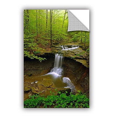 ArtWall Water Falls by Antonio Raggio Art Appeelz Removable Wall Mural; 18'' H x 12'' W x 0.1'' D