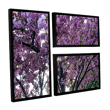 ArtWall Spring Flowers by Dan Wilson 3 Piece Framed Photographic Print on Canvas Set