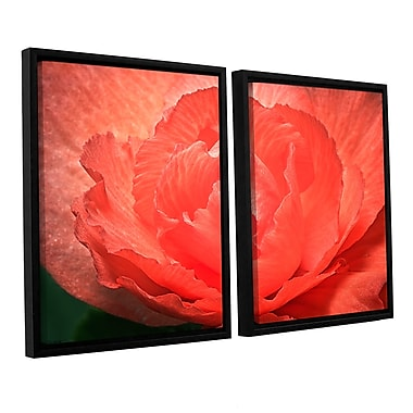 ArtWall Flower Petals by Antonio Raggio 2 Piece Framed Photographic Print on Canvas Set