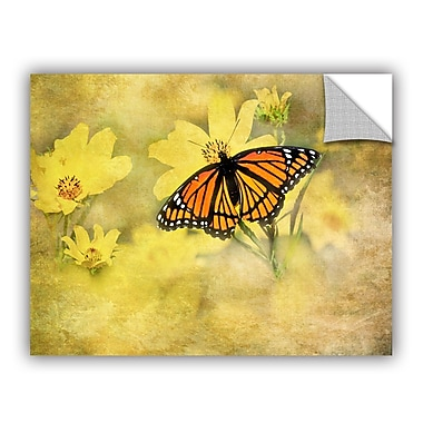 ArtWall Butterfly by Antonio Raggio Art Appeelz Removable Wall Mural; 24'' H x 32'' W x 0.1'' D