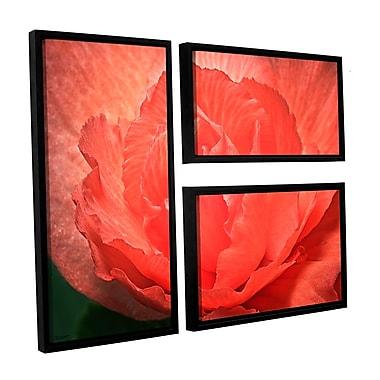 ArtWall Flower Petals by Antonio Raggio 3 Piece Framed Photographic Print on Canvas Set
