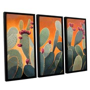 ArtWall Cactus Orange by Rick Kersten 3 Piece Framed Graphic Art on Canvas Set