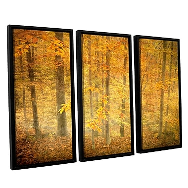ArtWall Lost In Autumn by Antonio Raggio 3 Piece Framed Photographic Print on Canvas Set