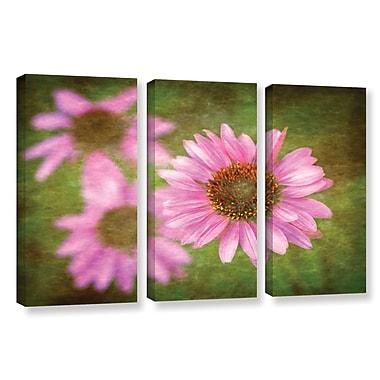 ArtWall Flowers In Focus 3 by Antonio Raggio 3 Piece Graphic Art on Wrapped Canvas Set
