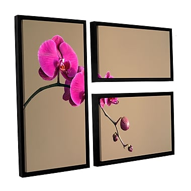 ArtWall Magenta Orchid by Elena Ray 3 Piece Framed Photographic Print on Canvas Set