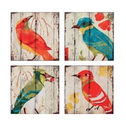 Creative Co-Op Haven Square MDF Bird 4 Piece Graphic on Plaque Art Set (Set of 4)