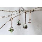 Creative Co-Op Terrain Glass Single Hanging Vase