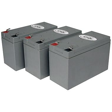 Tripp Lite Replacement Battery Cartridge 53