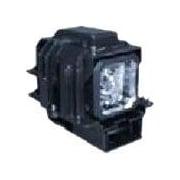 NEC Display – Lampe de rechange pour projecteur, (VT75LPE)