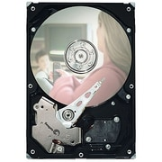 "Seagate 7200.3 ST3160215SCE 160 GB 3.5"" Internal Hard Drive"