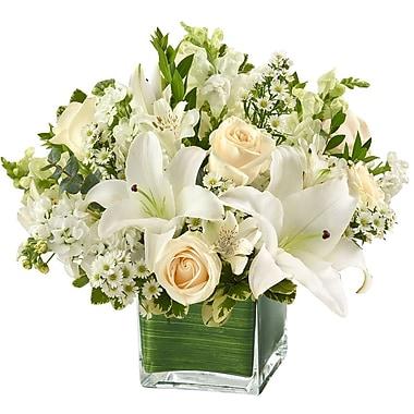 What A Bloom—Arrangement panier Paix, prières et bénédictions, Lavande et blanc