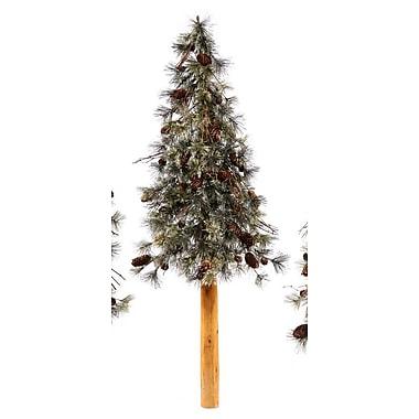 Vickerman Dakota Alpine Artificial Christmas Tree; 40''