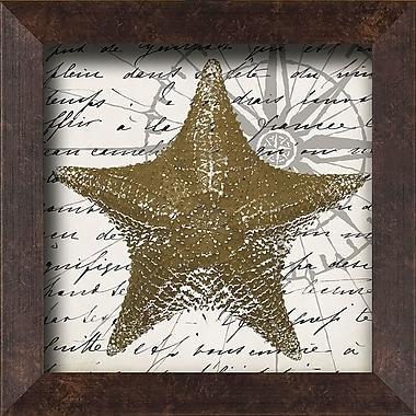 PTM Images Starfish Framed Graphic Art