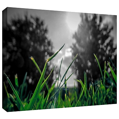 ArtWall 'Grass' by John Black Graphic Art on Wrapped Canvas; 32'' H x 48'' W