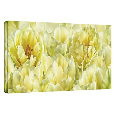 ArtWall 'Yellow' by Cora Niele Graphic Art on Wrapped Canvas; 16'' H x 48'' W