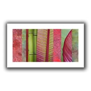 ArtWall Red Green' by Cora Niele Photographic Print on Rolled Canvas; 28'' H x 52'' W