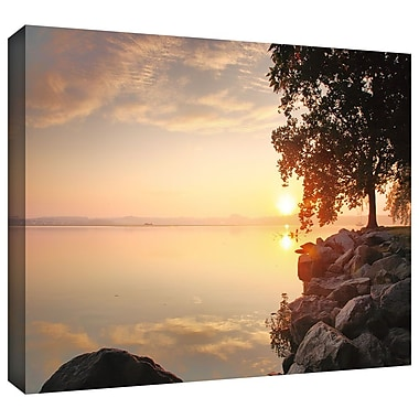 ArtWall 'Renewal' by Steven Ainsworth Photographic Print on Wrapped Canvas; 12'' H x 18'' W