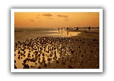 ArtWall 0807a' by Lindsey Janich Photographic Print on Rolled Canvas; 28'' H x 40'' W