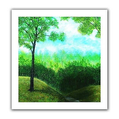 ArtWall Christians Road' by Herb Dickinson Graphic Art on Rolled Canvas; 40'' H x 40'' W